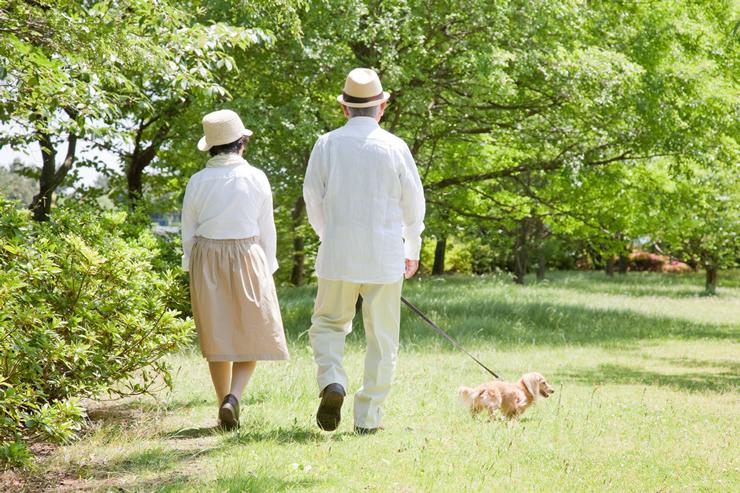 厚生年金は「公的年金制度」の一つ
