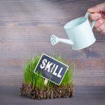 派遣社員のスキルアップ方法って?転職のタイミングやキャリアプランについても解説!